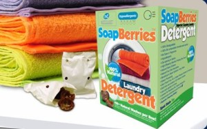 SoapBerries laundry detergent