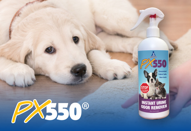 PX550 instantly removes malodors of pet urine