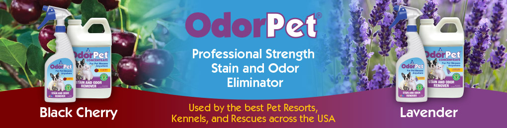 Alpha Tech Pet odoer and stain remover