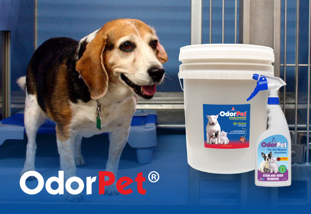 odorpet odor counteractant and cleaner